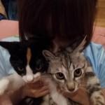 Tsukushi et Shokola, les deux dernières recrues